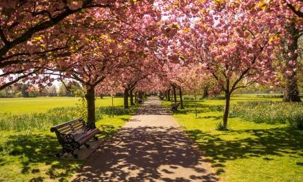 6 pontos turísticos incomuns de Londres que você deve conhecer