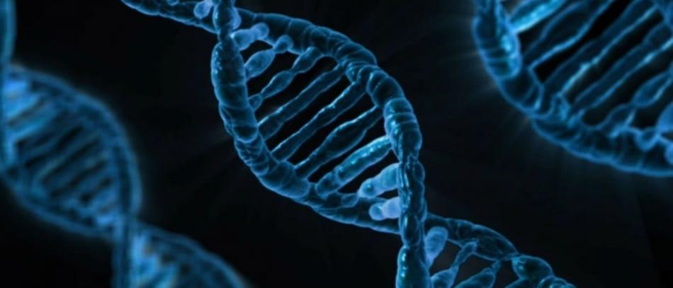 Reino Unido é o primeiro país a aprovar a edição de genes em embriões humanos